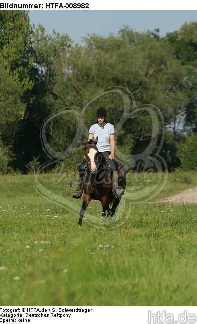 Frau reitet Deutsches Reitpony / woman rides pony / HTFA-008982