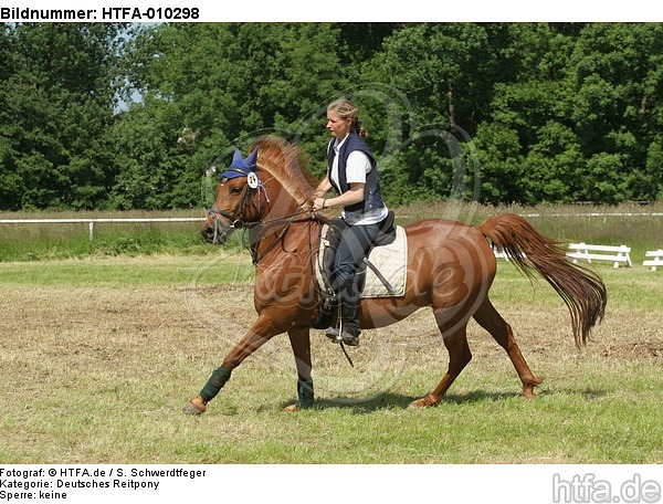 Frau reitet Deutsches Reitpony / woman rides pony / HTFA-010298