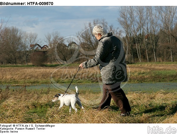Frau mit Parson Russell Terrier / woman with PRT / HTFA-009570
