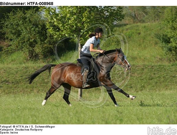 Frau reitet Deutsches Reitpony / woman rides pony / HTFA-008968