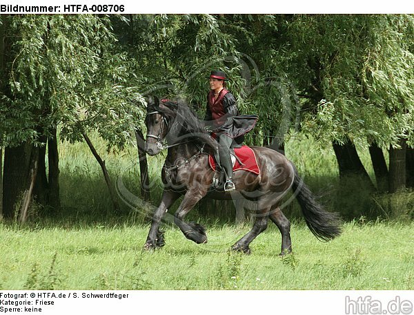 Frau reitet Friese / woman rides friesian horse / HTFA-008706