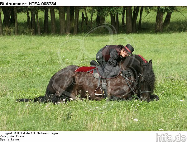 Frau mit Friese / woman and friesian horse / HTFA-008734