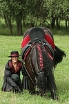 Frau mit Friese / woman and friesian horse
