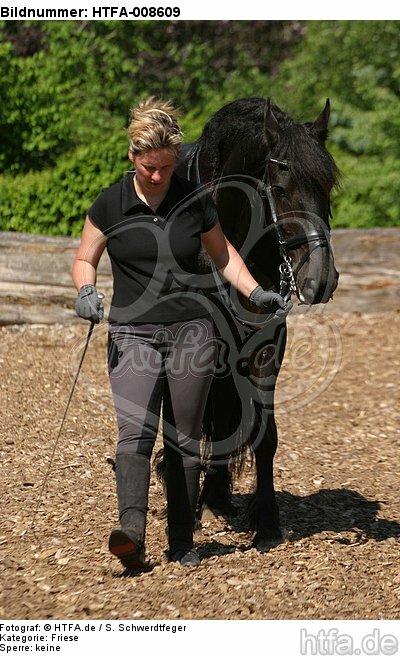 Frau f�hrt Friese / woman with friesian horse / HTFA-008609