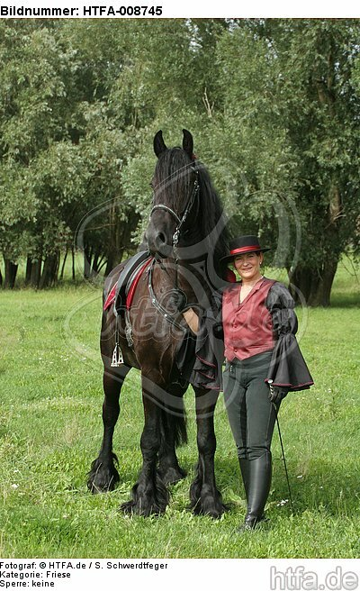 Frau mit Friese / woman and friesian horse / HTFA-008745
