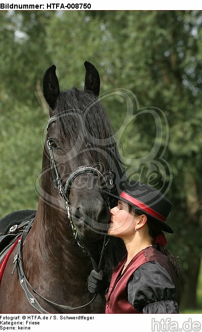 Frau k�sst Friese / woman is kissing friesian horse / HTFA-008750