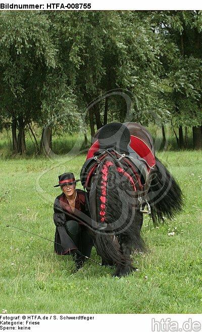 Frau mit Friese / woman and friesian horse / HTFA-008755