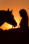 Frau und Deutsches Reitpony im Abendlicht / woman and pony