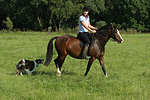 Frau mit Deutschem Reitpony auf einem Ausritt begleitet von Border Collie / woman rides pony accompanied by a border collie